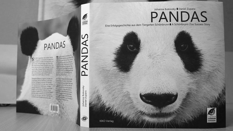 Vienna Zoos Pandas Picture Book Published