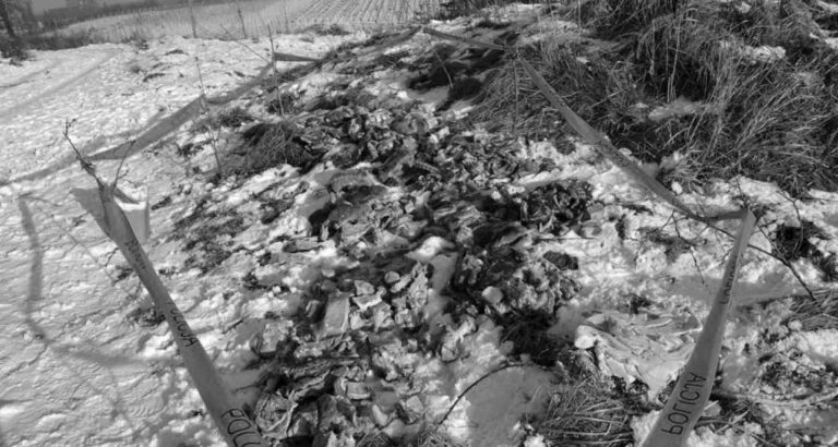 300kg Of Polish Meat Found In Field In Wake Of Scandal