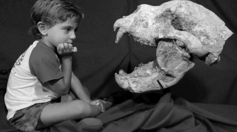 Credit: CEN/Museo Paleontologico San Pedro Fray Manuel de Torres