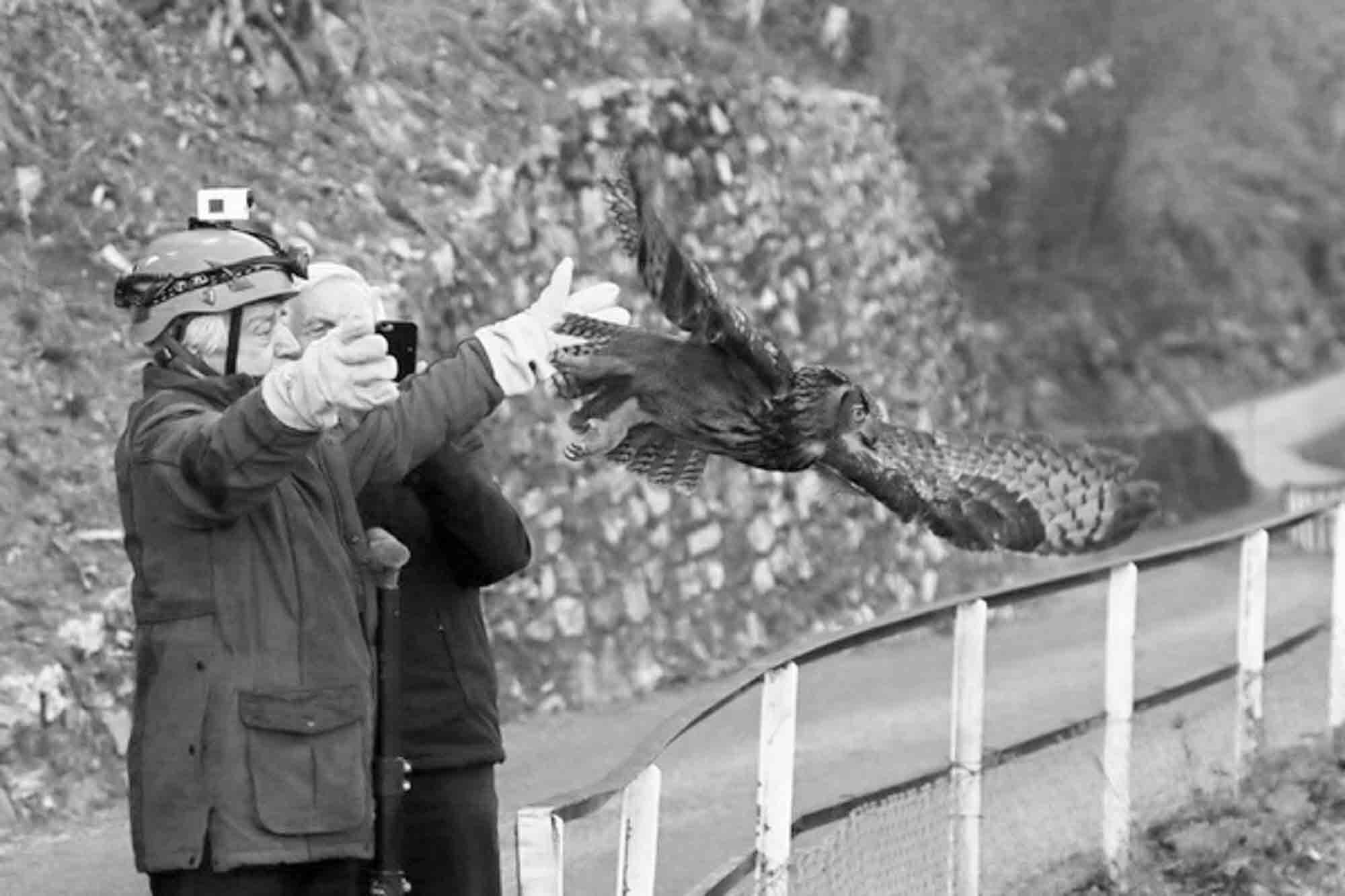 Rescued 1-Eyed Eagle Owl Released Back Into The Wild