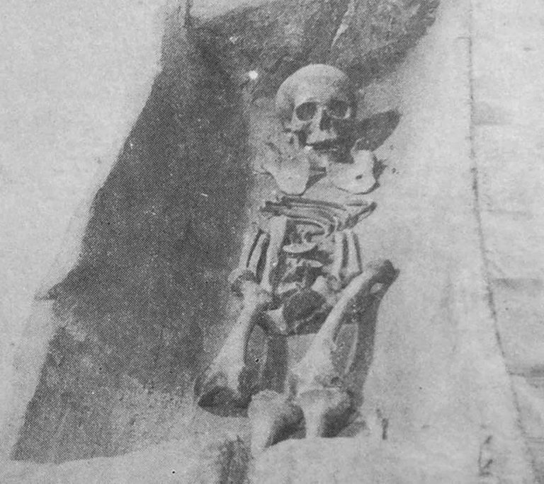 Experts Say Skeleton In Tree Trunk Is 2,000 Years Old