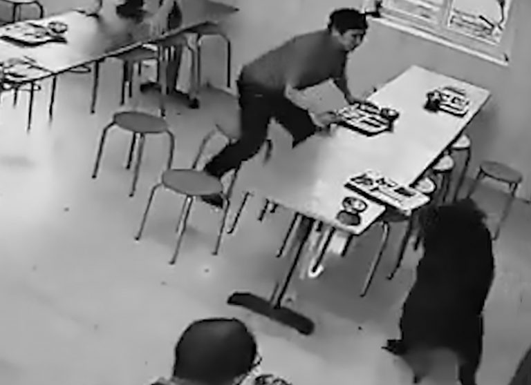 Stampede As Wild Boar Storms Through Busy Staff Canteen
