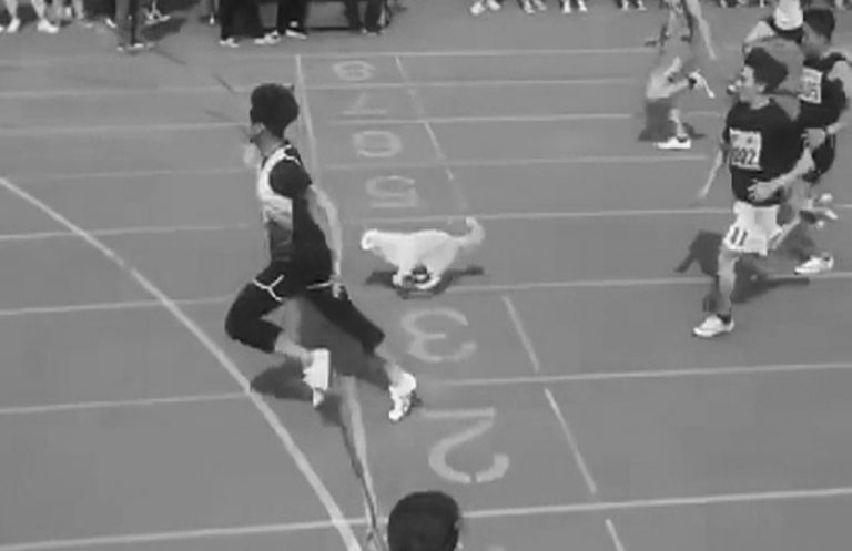 Viral:Crowd Cheers As Uni Dog Finishes 3rd In 100m Dash