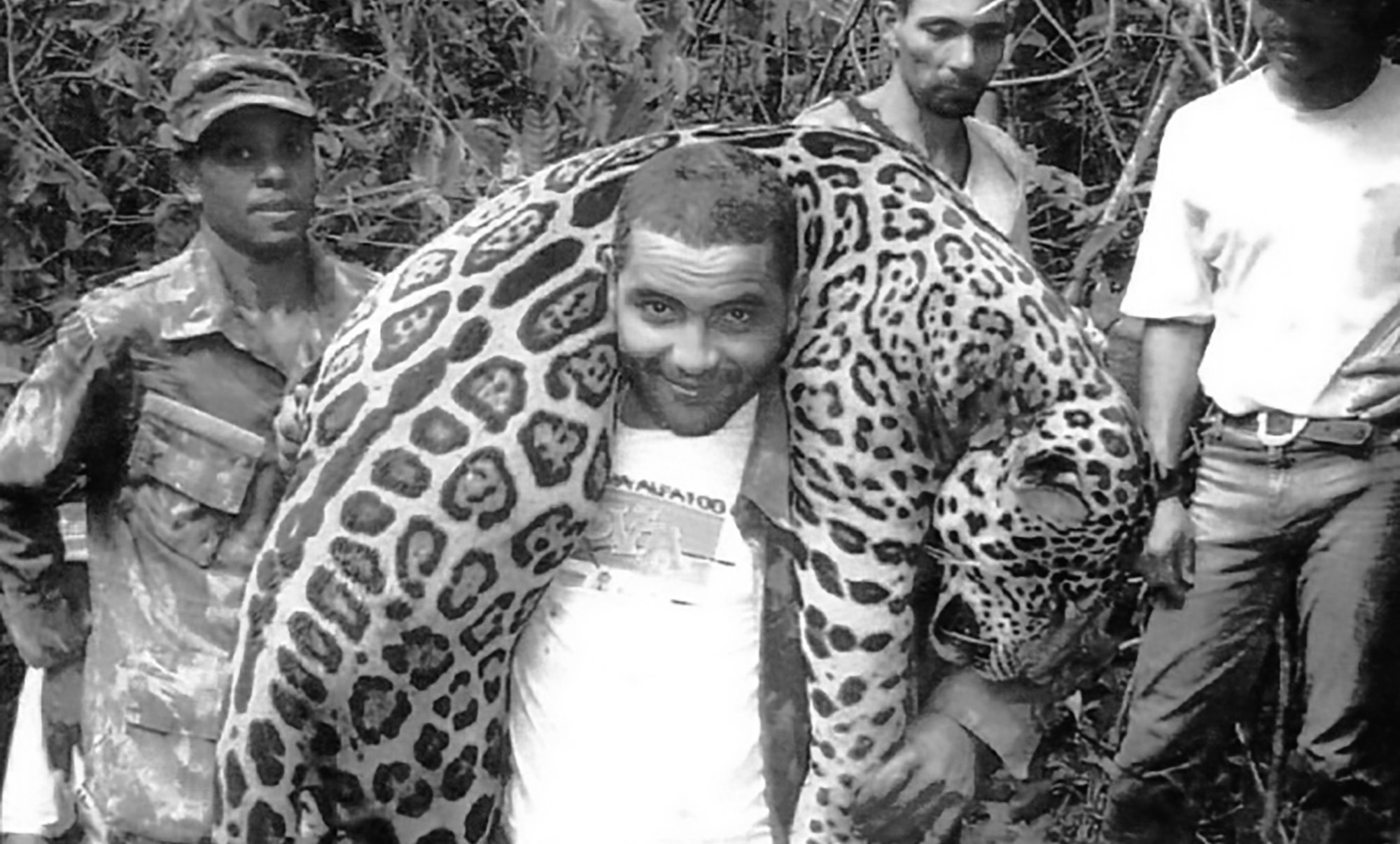 Killer Dentist Poached 1k Protected Jaguars