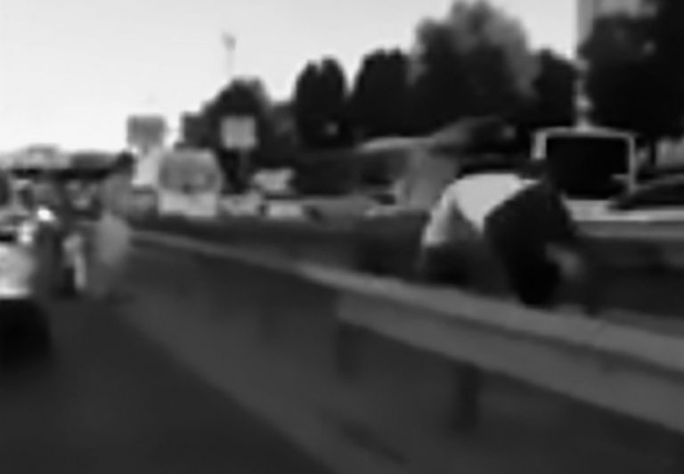 Man Dashes Through Traffic To Rescue Kitten From Bus