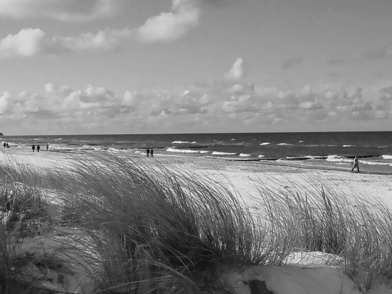 Killer Summer Beach Virus That Thrives In 20C Kills OAP