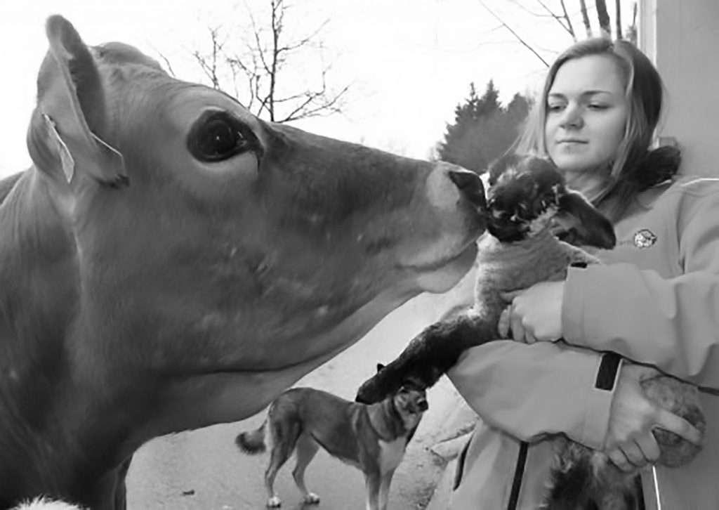 Credit: Newsflash/Animal Spirit Austria