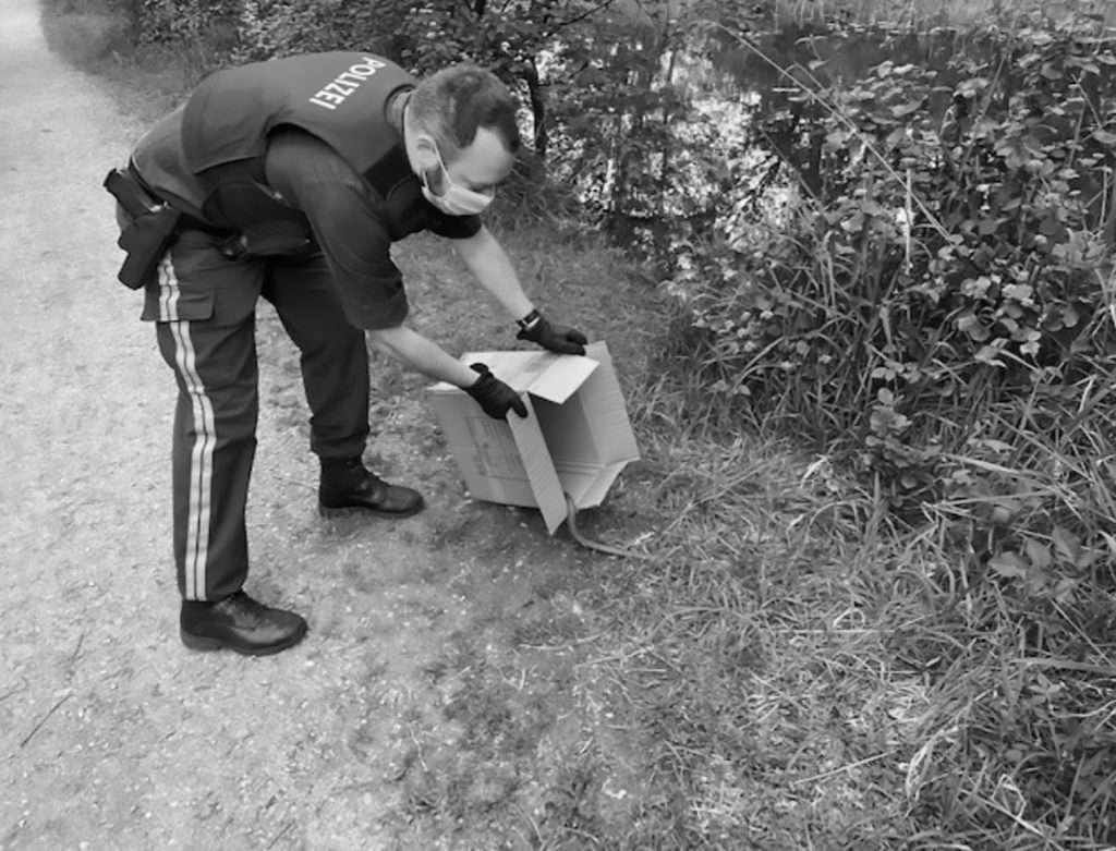 Credit: Newsflash/Polizei Vorarlberg