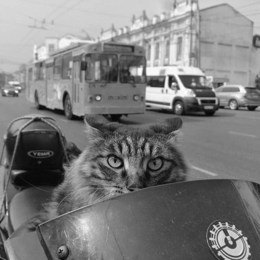 Semyon Vityazev/Newsflash