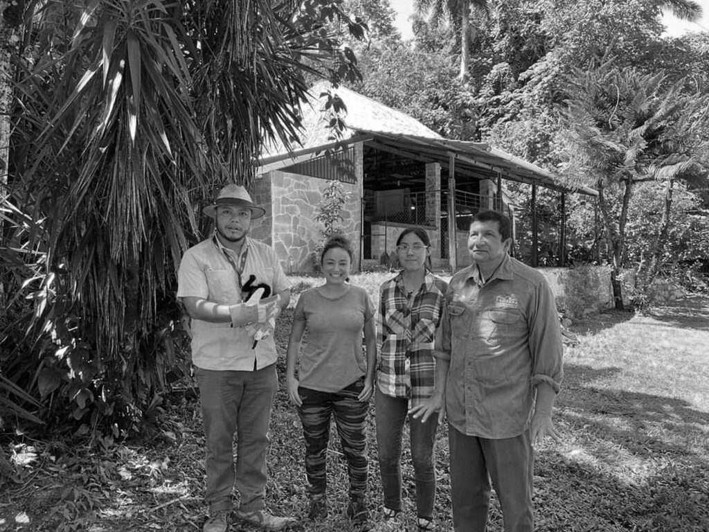 Credit: H. Ayuntamiento Municipal de Palenque/Newsflash