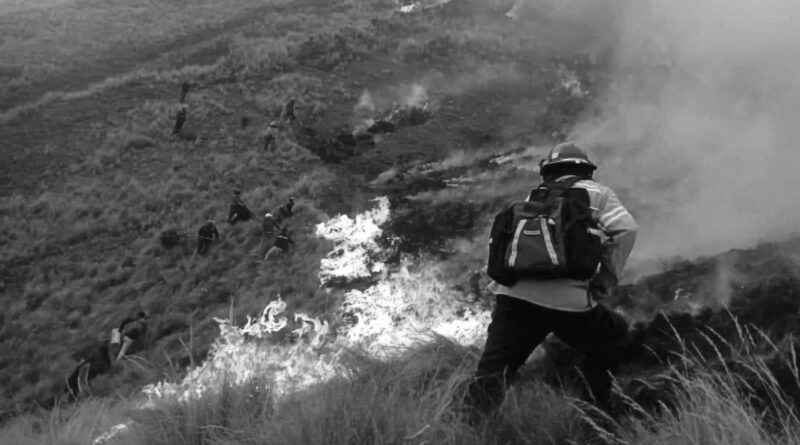 Credit: Prevencion Incendios Forestales Cusco/Newsflash