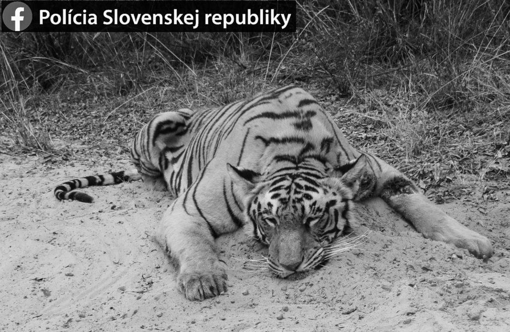 Credit: @policiaslovakia/Newsflash